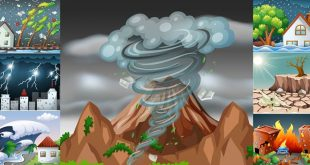 NCERT 5th Class (CBSE) Social Science: Natural Disasters