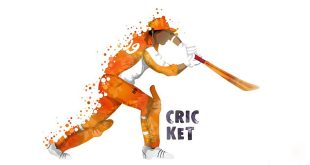 A Cricket Match - Essay in English