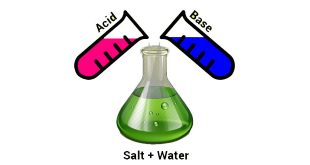 NCERT 7th Class (CBSE) Science: Acids, Bases and Salts