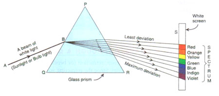 Question Draw A Diagram To Show The Dispersion Of White Light Into Seven Colours By Glass Prism