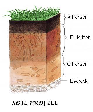 soil profil