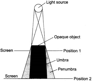 Formation of Umbra and Penumbra