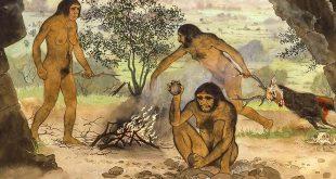 The Earliest Societies