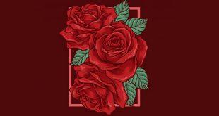 गुलाब के फूल की आत्मकथा