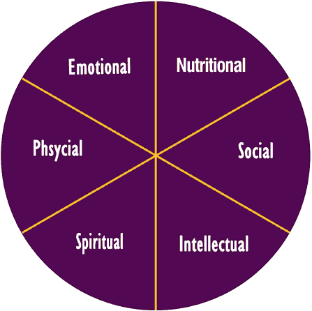 Components Of Wellness