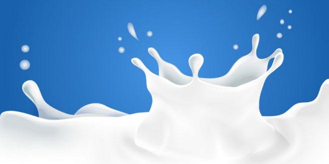 दूध पर हिंदी निबंध Hindi Essay on Milk