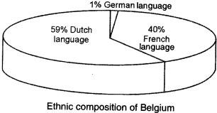 Ethnic communities of Belgium